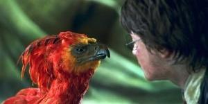 Les créatures de rêves et de cauchemars de la saga Harry Potter