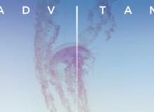 Le monde d'Ad vitam, la série de Thomas Cailley